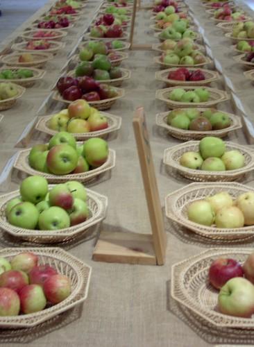 Apfelausstellung